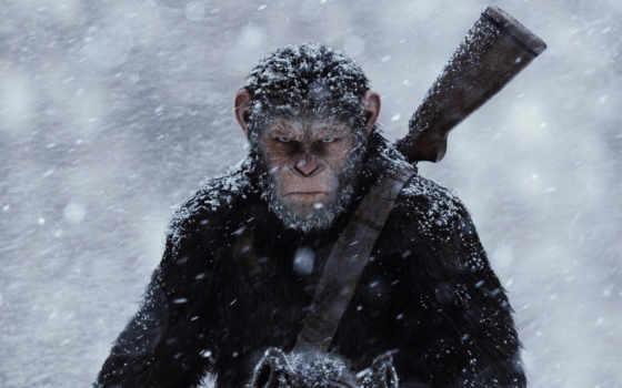 снег, планеты, обезьян, war, white,