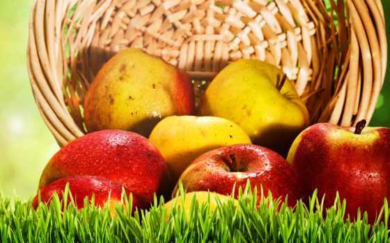 яблоки, сорт, еда, яблок, корзина, изображение, сладкое