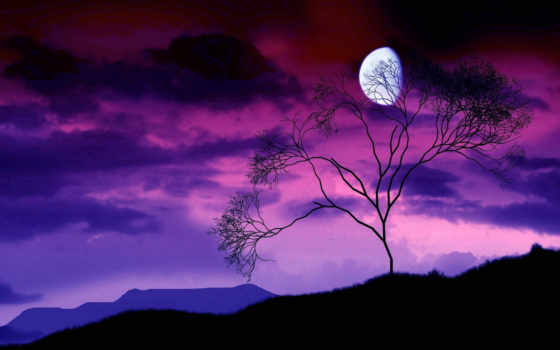небо, луна, ночь Фон № 64854 разрешение 1920x1200
