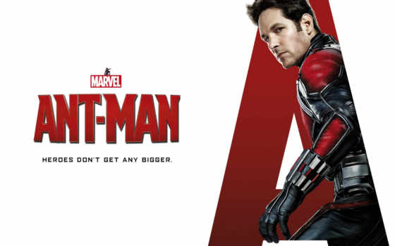 мужчина, ant, paul, rudd,