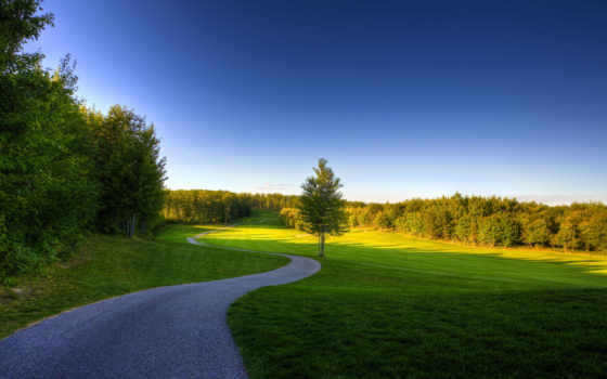 природа, summer, небо, трава, trees, russian, заставки, красивые,