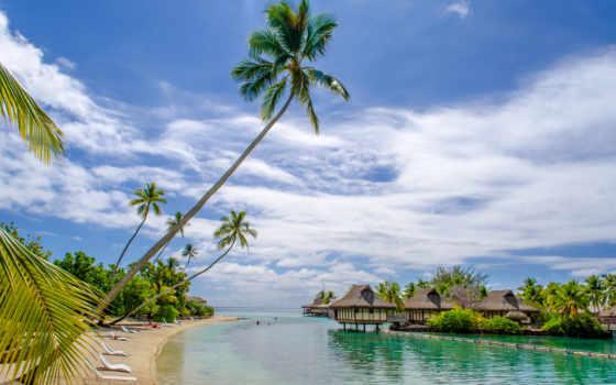 взгляд, пляж, natural, природа, самый, pictures, desktop, latest,