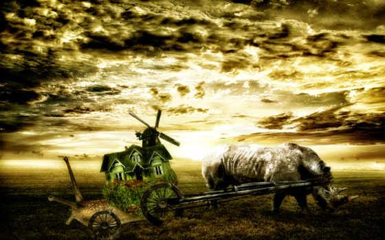 descargar, deviantart, gratis, носорог, stockflower, snailstock, lodge,