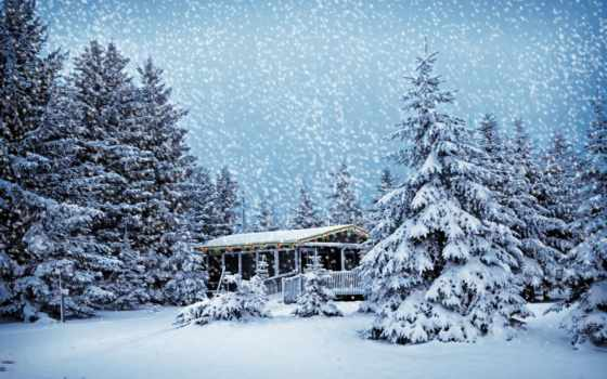 лесу, зимнем, lodge, house,