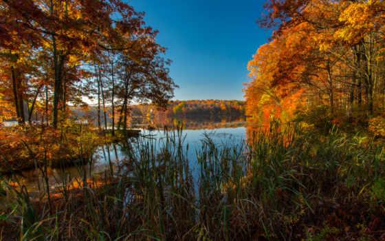 осень, природа, пруд, tapety, картинка, сша, ручей, страница, desktop,