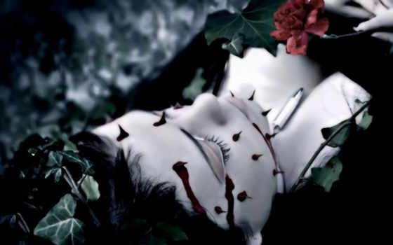 розы, кровь, темы