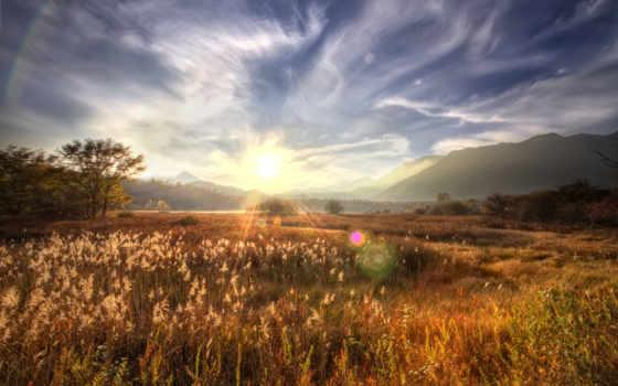 sun, wqhd, июнь, лучи, горы, деревя, блики,