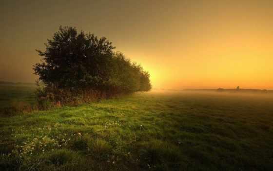 natura, bella, bellissima, immagini, divertenti, search, immaginidiverte, природа, красивые, ди,