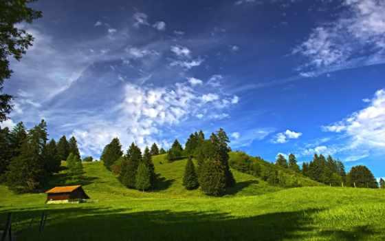 house, small, поле, patchen, log, summer, hard, старые,