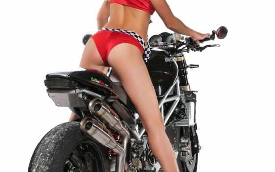 ducati, monster, pinterest, panigale, custom, motorcycles, bellissimoto, you, devushki,