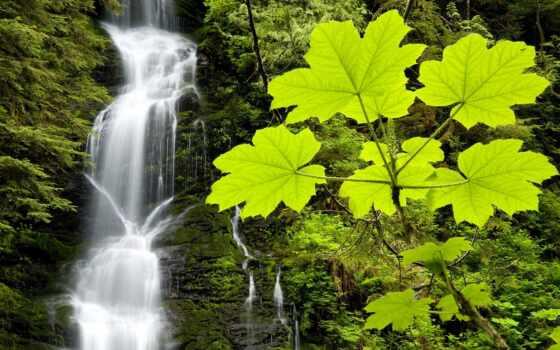 река, природа, пасть, postcard, water, boulder, formatı