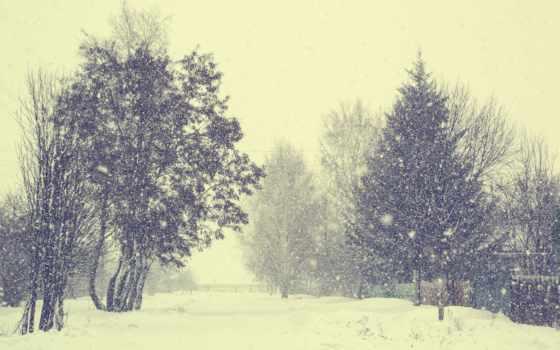снег, деревня, winter