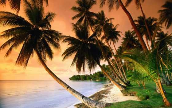 море, фотографий, tropics, оригинальные, моря, природа, берег, изображения, пляж, бесплатные,