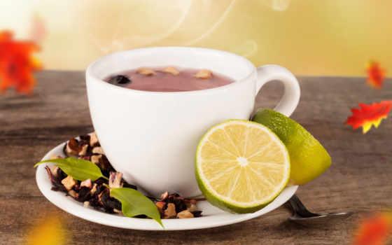 cup, чая, чая, горячего,