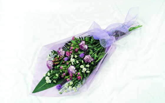 цветы, букеты, гвоздики