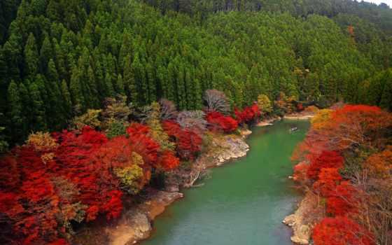 япония, kyoto, arashiyama