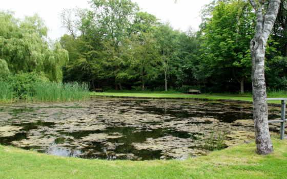 парки, картинка, природа