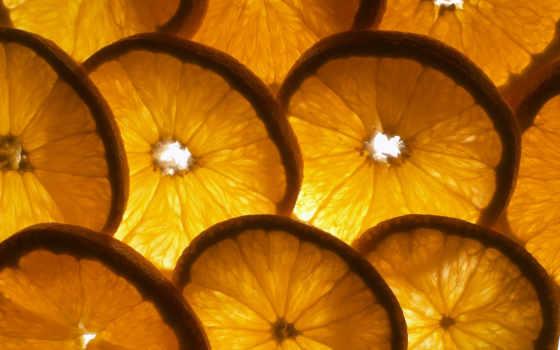 фрукты, широкоформатные, апельсины,