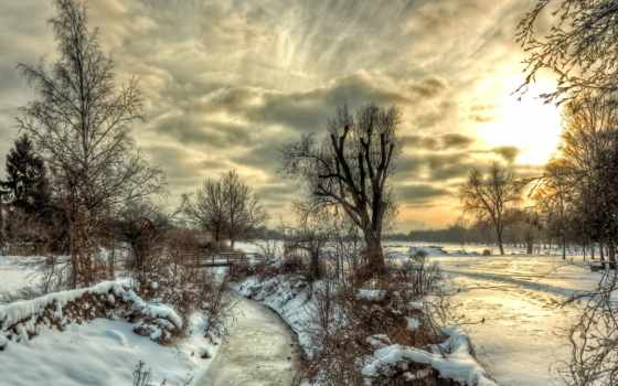 пейзаж, деревья Фон № 31721 разрешение 1920x1080