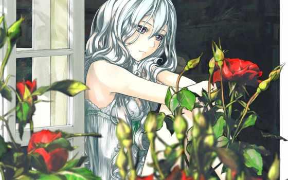 anime, девушка, розы