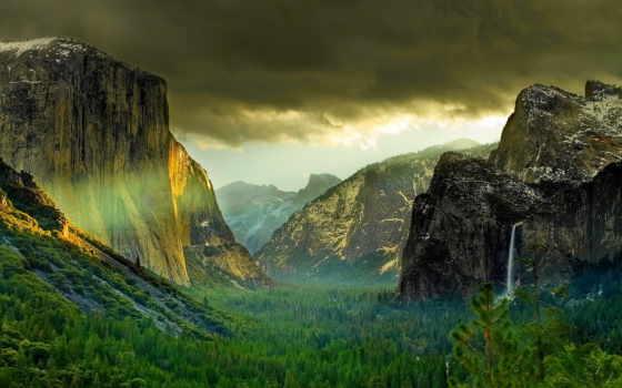 природа, горы, лес Фон № 64707 разрешение 1920x1080