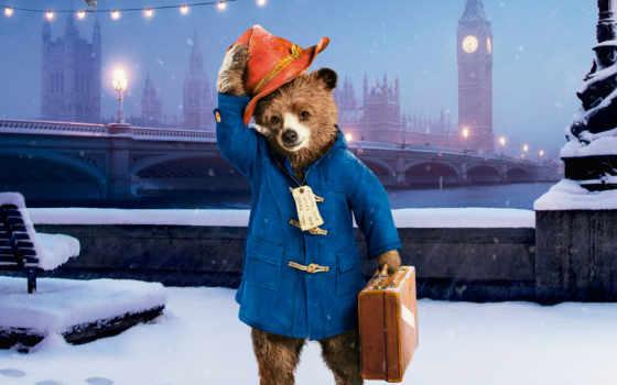 paddington, медведь, паддингтона