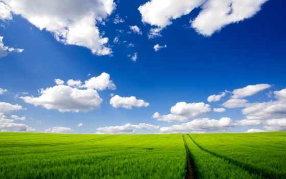 небо, зелёный, поле, трава, планеты, газон, cosmos, oblaka,