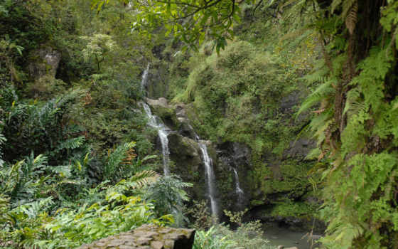 водопад, зелень
