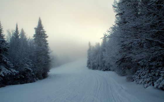 winter, снег, есть