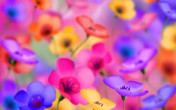 яркие, цветы, начало