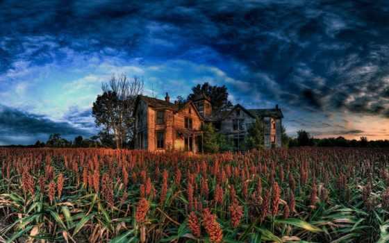 поле, house, хмурый,