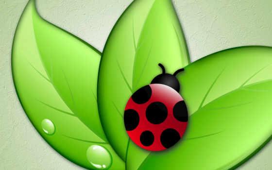 анимация, насекомые,
