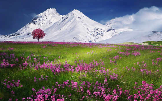 горы, заснеженные, фоны