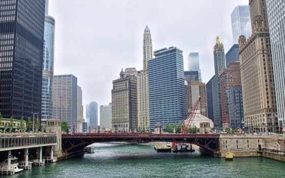 chicago, desktop, bulls, converter, online,