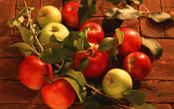 яблоки, фрукты, осенние, корзина, осень, качестве, высоком, базе, виноград,
