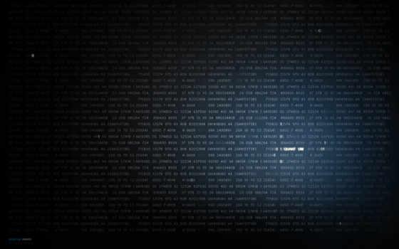 код, binary