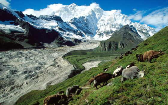 tibet, природа, красивые