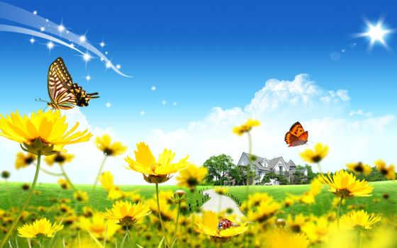 подборка, высокого, качества, красивые, свежая, desktop, garden, разнотематическ,