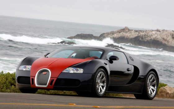 bugatti, veyron, cars, car, стена, free,