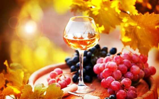 online, фотоэффекты, вино