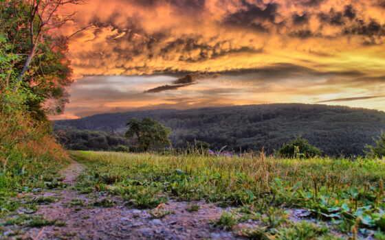 природа, зелёный, красивый, landscape, peakmus, new, altun, abdullah, трава