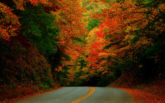 osen, октябрь, дорога
