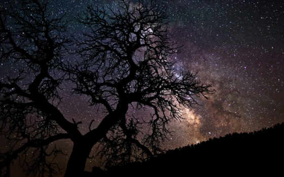 небо, музыка, mobile, free, ночь, разных, звездное, drvo,