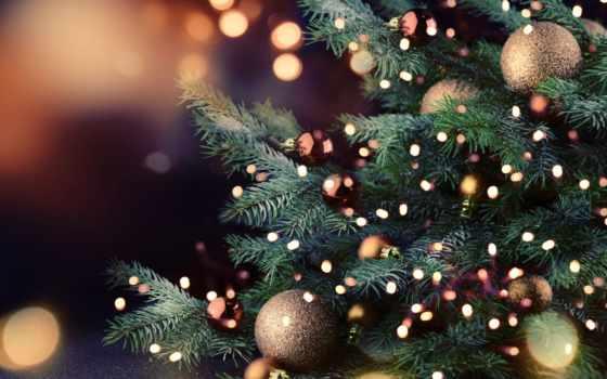 огни, новогодние, приглашают, christmas, выставка, сказку, года, new, год,