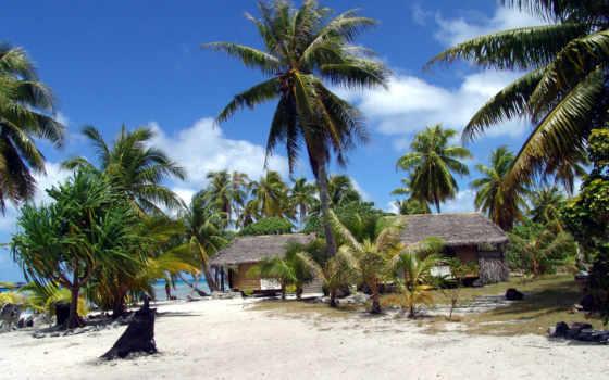 островов, океания, полинезия, острова, французская, центральной, пальмы, марта, море, тихий, polinezia, ocean, landscape,