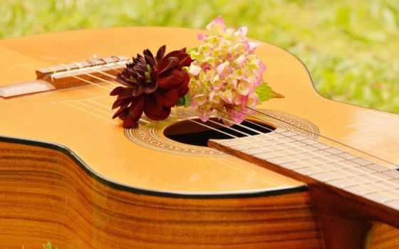 instrumento, гитара, музы, violão, instrumentos, pixabay, para,,