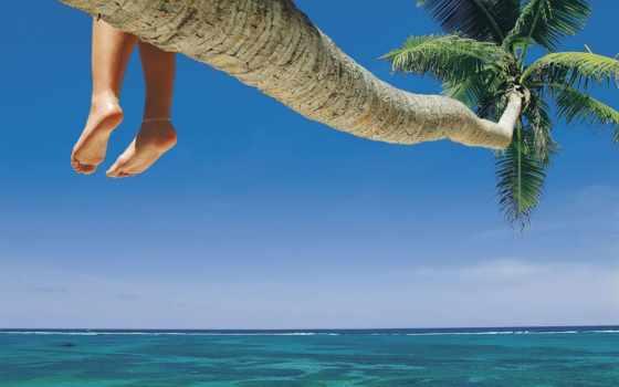 palm, море, ocean, заставка, foot, water, nail