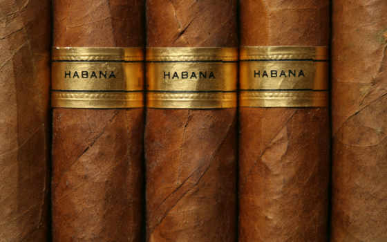 сигары, гламур
