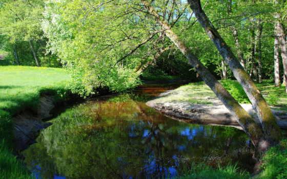 природа, реки, latvia