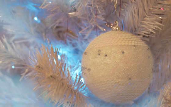 дерево, мяч, toy